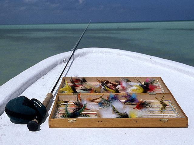 Tarpon,Tarponfishing,mexico,isla holbox