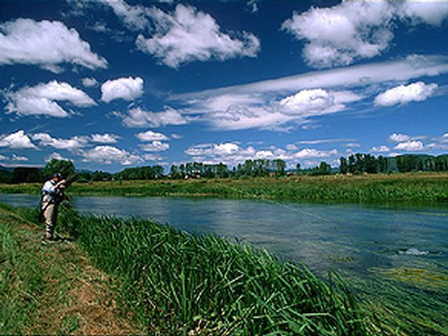 Gacka - Europas fornemste Spring Creek