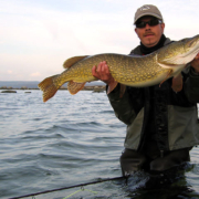 Geddefluefiskeri, Pikefly, Pike fly fishing