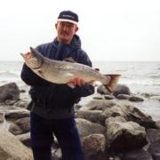 Den sikre vej til Bornholms store havørreder
