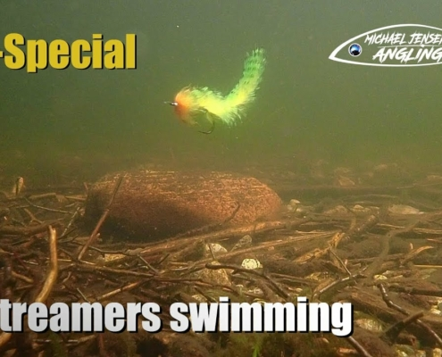 11-Streamer-flies-swimming-under-water
