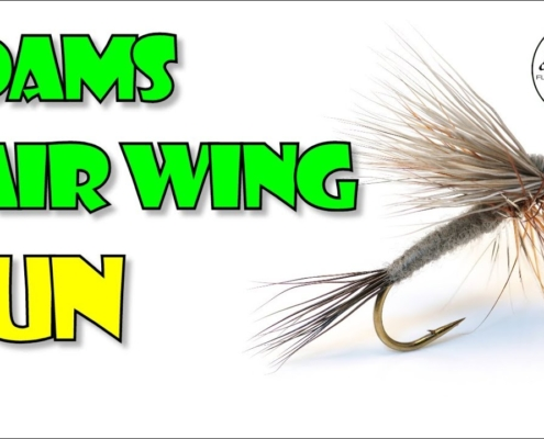 Adams-Hairwing-Dun-Caddis-or-Mayfly