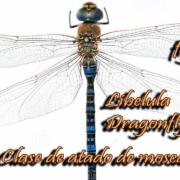 Adult-Dragonfly-Live-fly-tying-lesson-by-Ruben-Martin