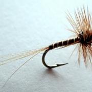 BM-Dry-Fly