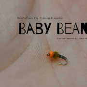 Baby-Bean-Fly-Tying-Tutorial