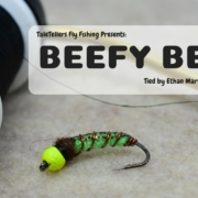 Beefy-Bean-Fly-Tying-Tutorial