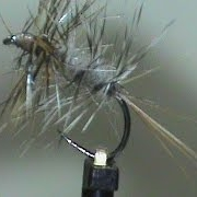 Beginner-Fly-Tying-a-Grizzly-Bi-Color-with-Jim-Misiura