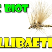 Biot-CDC-Callibaetis-by-Fly-Fish-Food