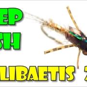 Deep-Dish-Callibaetis-Brown-Drake-by-Fly-Fish-Food