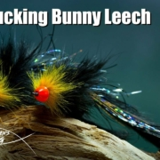 Egg-Sucking-Bunny-Leech-streamer-fly-tying