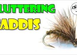 Fluttering-Caddis-Twitch-it-and-Hang-on
