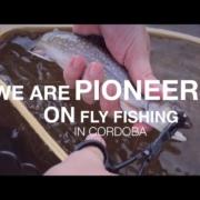 Fly-Fishing-Cordoba-Highlands-Pointer-Fly