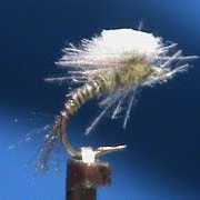 Fly-Tying-a-CDC-Budding-Beatis-Emerger-with-Jim-Misiura