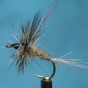 Fly-Tying-an-Olive-Adams-with-Jim-Misiura