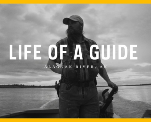 Life-of-a-Guide