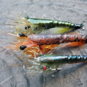 Martin-Shrimp-simple-and-realistic-fly-tying-instructions-by-Ruben-Martin