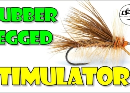 Rubber-Legged-Stimulator-SALMON-FLY-version