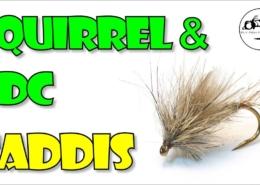 Squirrel-CDC-Caddis-Emerger-or-Dry