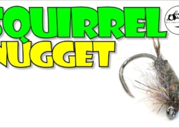 The-Squirrel-Nugget-NYMPH