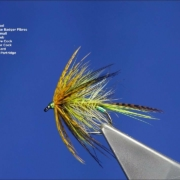 Tying-The-McGregor-Irish-Wet-Fly-by-Davie-McPhail