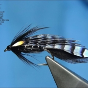 Tying-a-Blue-Jay-Matuka-Fly-by-Davie-McPhail