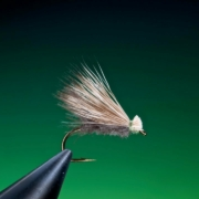Tying-a-CDC-Elk-hair-with-Barry-Ord-Clarke