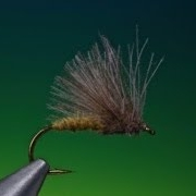 Tying-a-CdC-caddis-with-Barry-Ord-Clarke