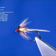 Tying-a-Cruncher-Fry-Wet-Fly-by-Davie-McPhail