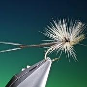 Tying-a-Detached-body-para-loop-mayfly-with-Barry-Ord-Clarke