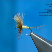 Tying-a-Golden-Olive-Comparadun-by-Davie-McPhail