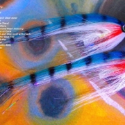 Tying-a-Saltwater-Turbo-Disc-Tube-Fly-by-Davie-McPhail