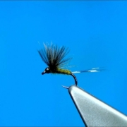 Tying-a-Small-CDC-Dun-Dry-Fly-with-Davie-McPhail