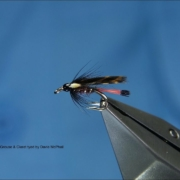 Tying-a-Small-Double-Grouse-Claret-with-Davie-McPhail