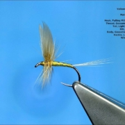 Tying-a-Traditional-Winged-Dry-Fly-the-Yellow-May-with-Davie-McPhail