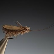 Tying-a-Wonder-wing-caddis-with-Barry-Ord-Clarke