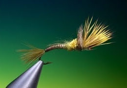 Tying-a-cripple-green-drake-with-Barry-Ord-Clarke