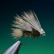 Tying-a-double-super-bug-with-Barry-Ord-Clarke