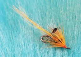Tying-an-Allys-Shrimp-with-Martyn-White-salmon-fly
