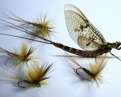 Tying-an-Irish-Mayfly-Dun-Parachute-Style-Dry-Fly-with-Davie-McPhail
