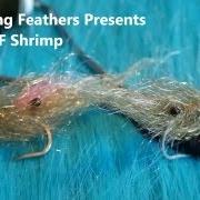Tying-an-SLF-Shrimp