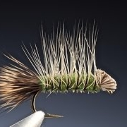 Tying-the-Dyret-Animal-with-Barry-Ord-Clarke