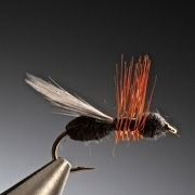 Tying-the-Flying-Wood-Ant-with-Barry-Ord-Clarke