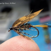 Tying-the-Hardys-Favourite-Wet-Fly-with-Davie-McPhail