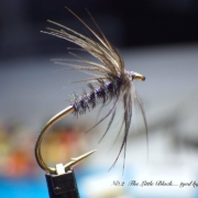 Tying-the-Little-Black-Soft-HackleWet-Fly-with-Davie-McPhail