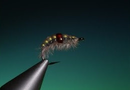 Tying-the-Melt-Glue-Gammarus-with-Barry-Ord-Clarke