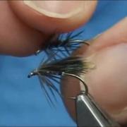 Tying-the-Stewarts-Black-Spider-Davies-Spider-with-Davie-McPhail