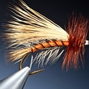 Tying-the-Stimulator-with-Barry-Ord-Clarke