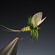 Tying-the-Yellow-mayfly-Dun-with-Barry-Ord-Clarke
