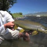 2013-Fish-REEL-fly-fishing-Montana