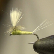 AKs-Quill-Body-Parachute-BWO-Dry-Fly-Tying-Directions
